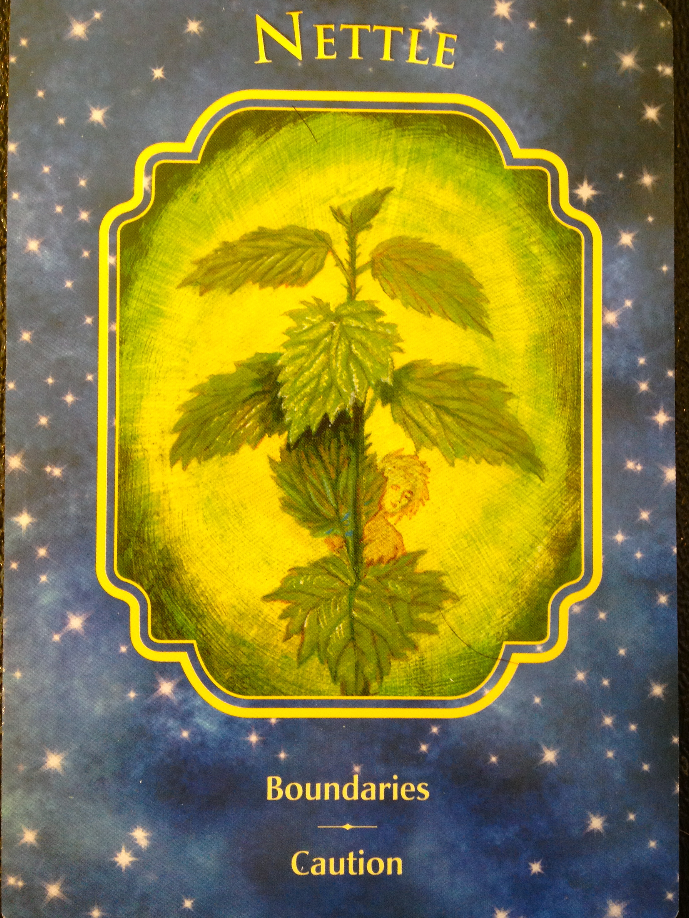 Archangel Oracle Divine Guidance: Archangel Oracle ~ Divine