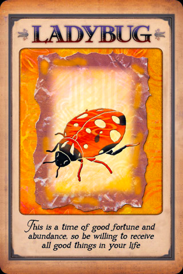 Ladybug Archangel Oracle Divine Guidance