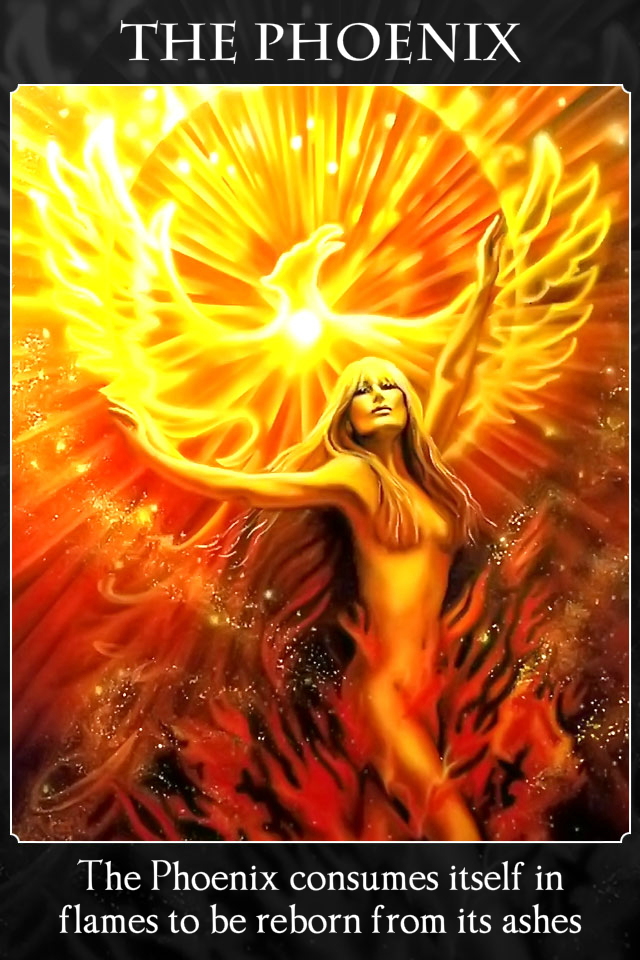 The Phoenix Archangel Oracle Divine Guidance
