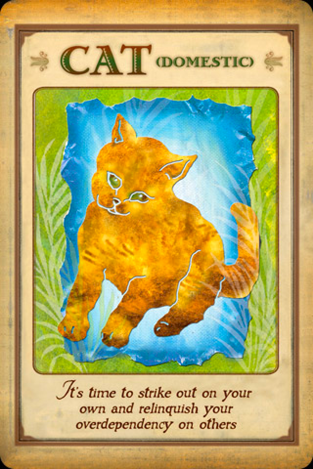 Messages from your animal spirit guides.
