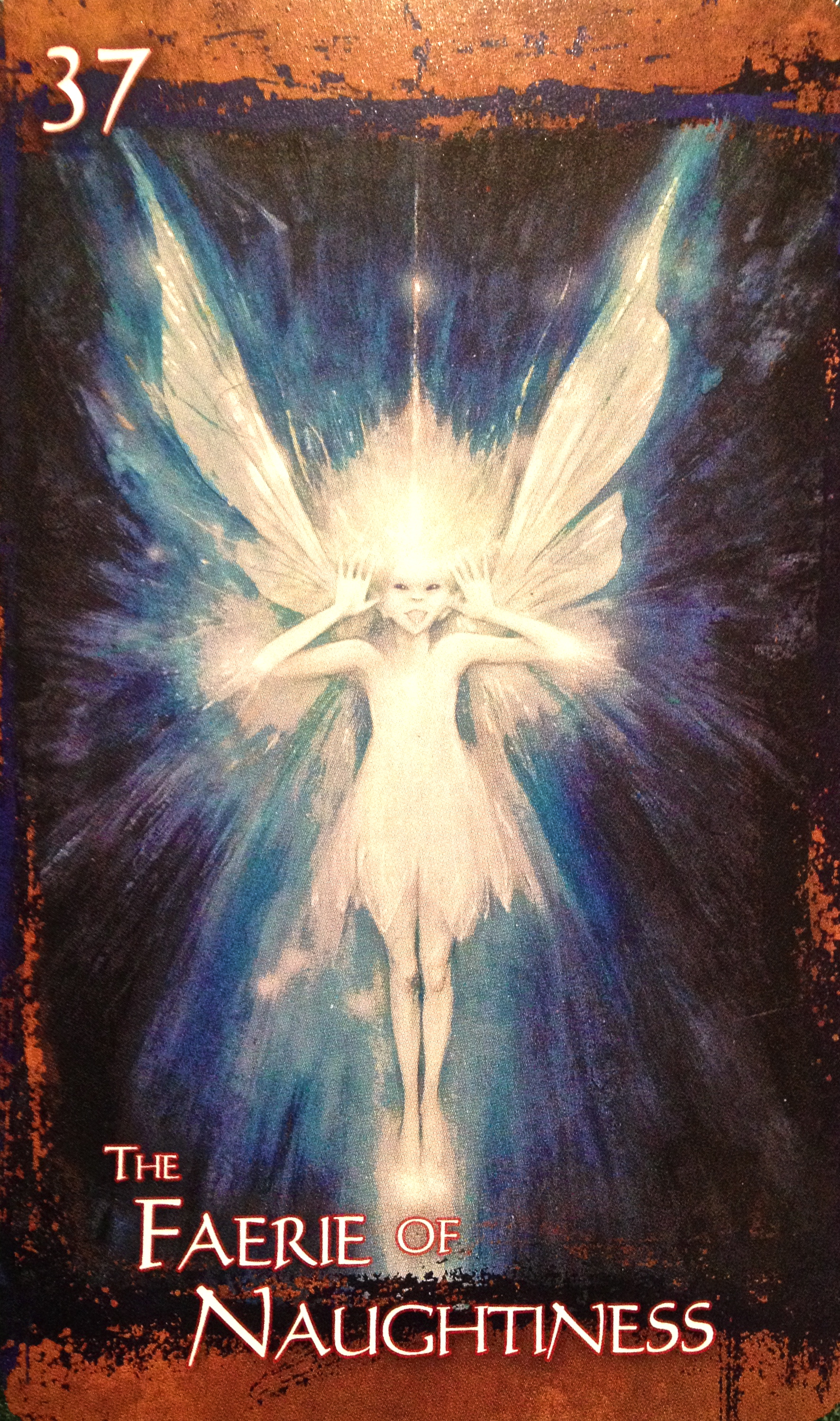 Wild Wisdom of the Faery Oracle – MessagesFromWithinBlog |Faery Oracle
