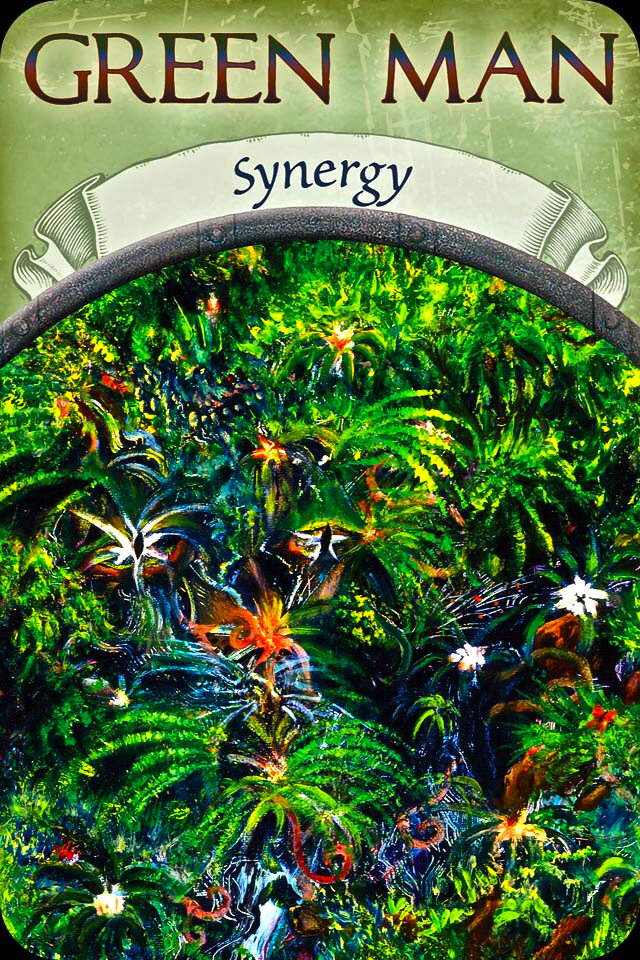 Green Man ~ Synergy, from the Earth Magic Oracle Card deck, by Stephen D Farmer