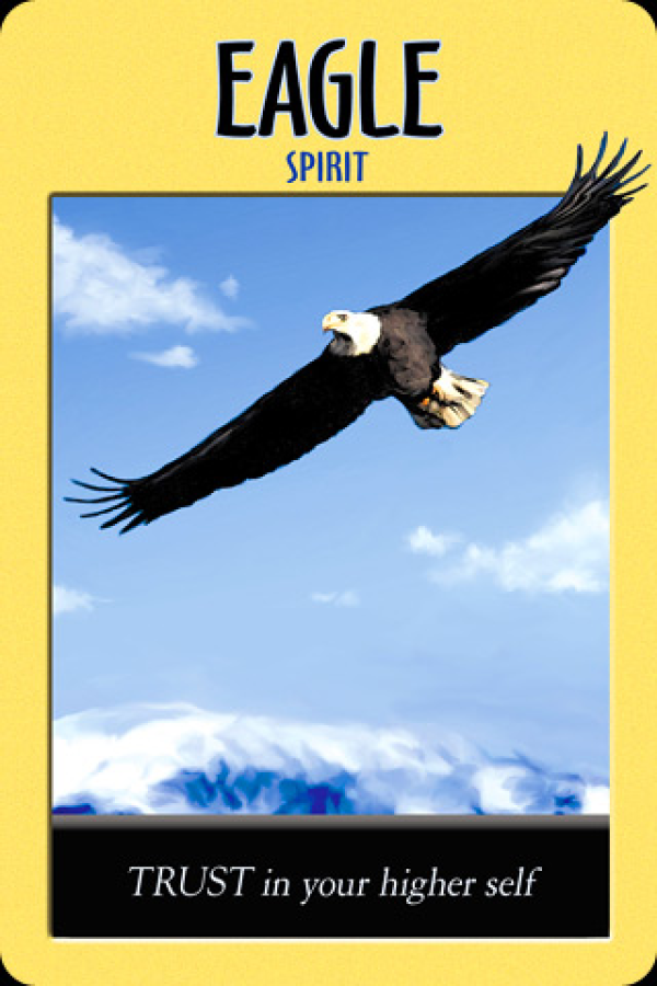 Eagle ~ Spirit, from the Power Animal Oracle Card deck, by Stephen D Farmer