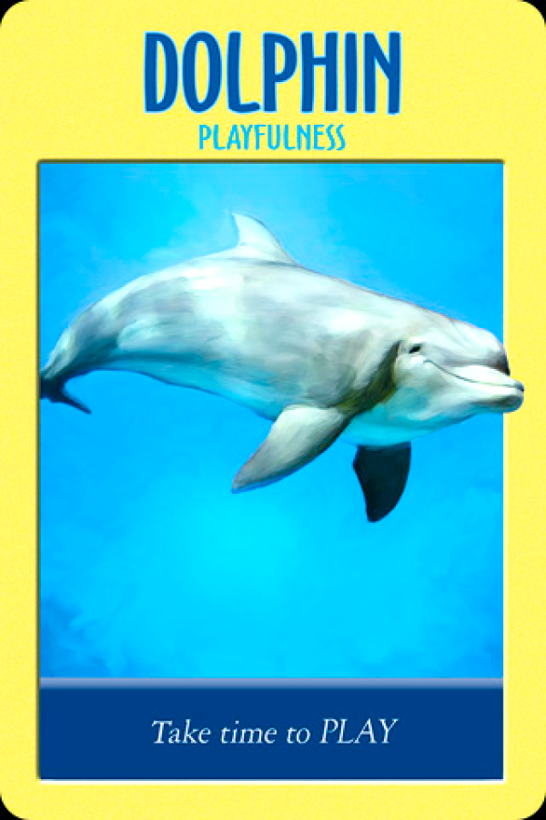 Dolphin ~ Playfulness, from the Power Animal Oracle Card deck, by Stephen D Farmer.