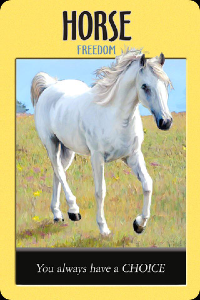 Horse ~ Freedom