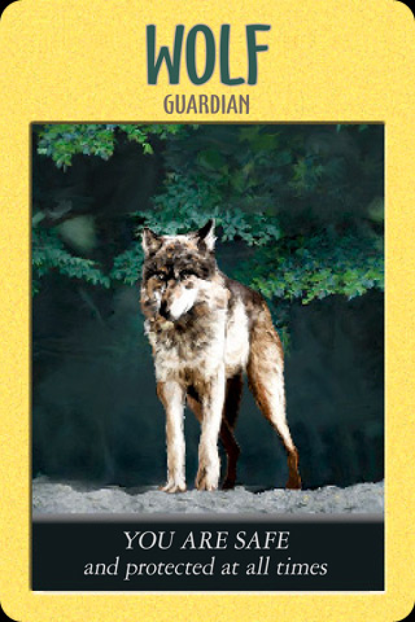 Wolf ~ Guardian, from the Power Animal Oracle Card deck, by Stephen D Farmer