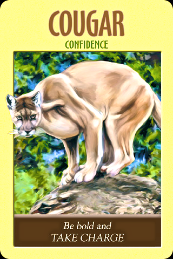 Confidence ~ Cougar, from the Power Animal Oracle Card deck, by Stephen D Farmer