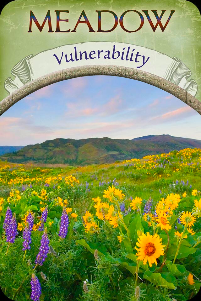 Meadow ~ Vulnerability, from the Earth Magic Oracle Card deck, by Stephen D Farmer