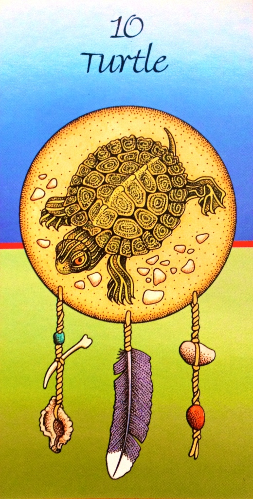 Turtle Medicine, from the Medicine Cards by Jamie Sams and David Carson