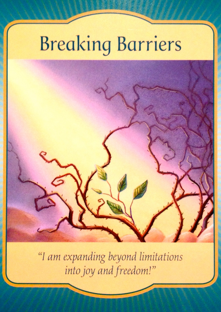 Breaking Barriers, from the Gateway Oracle Card deck, by Denise Linn