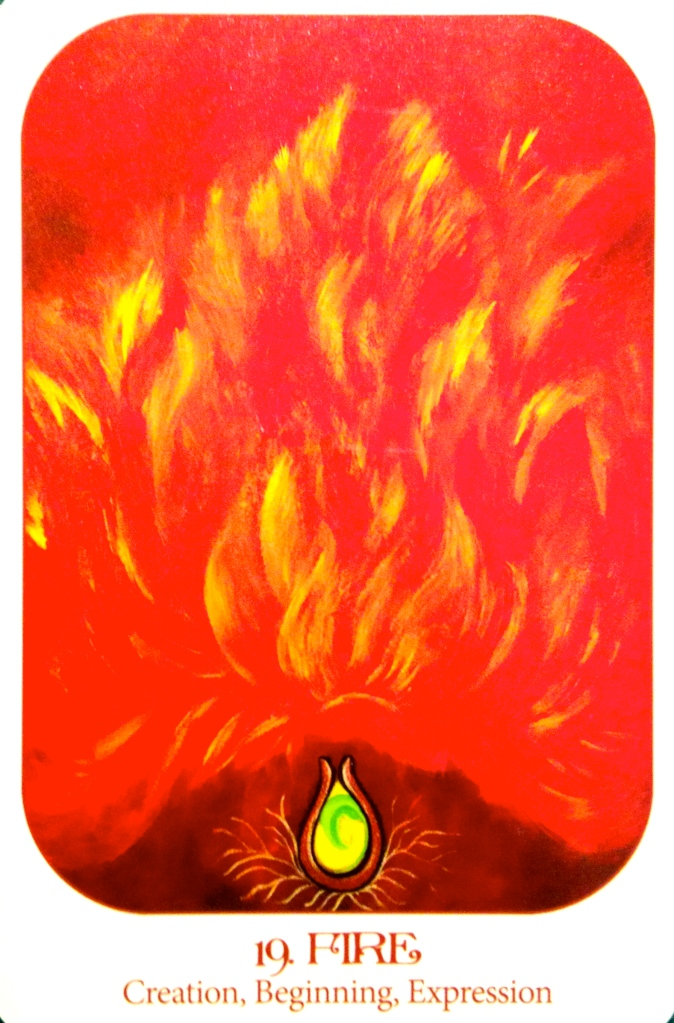 Fire ~ Creation, Beginning, Expression, from the Animal Voices Oracle Card deck, by Chip Richards and Susan Farrell