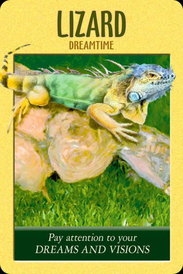 Lizard ~ Dreamtime, from the Power Animals Oracle Card deck, by Stephen D Farmer