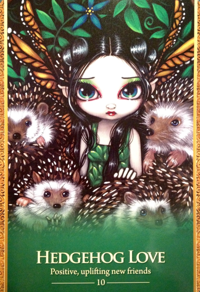 Hedgehog Love, from the Oracle Of The Shapeshifters, by Lucy Cavendish