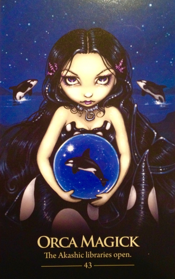 Orca Magick, from the Oracle Of The Shapeshifters, by Lucy Cavendish