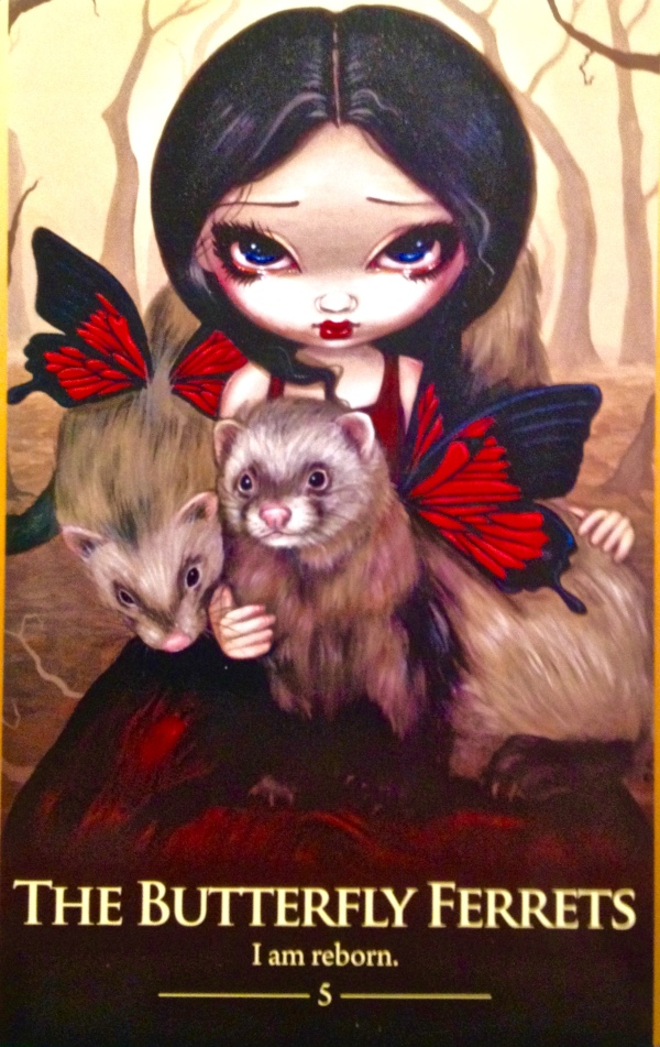 The Butterfly Ferrets, from the Oracle Of The Shapeshifters, by Lucy Cavendish