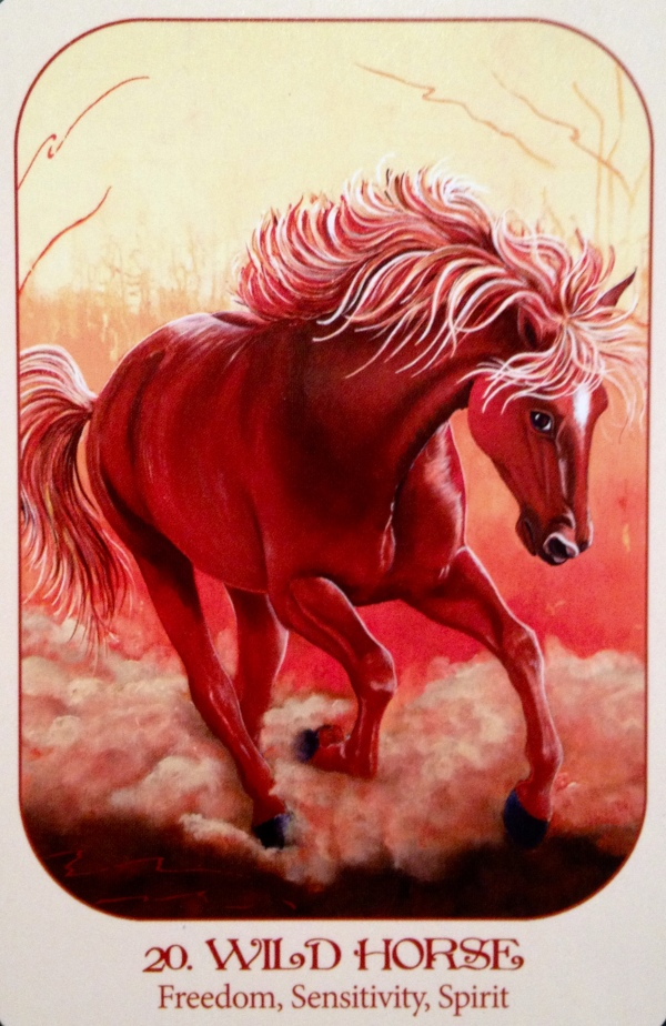 WILD HORSE - Archangel Oracle Divine Guidance