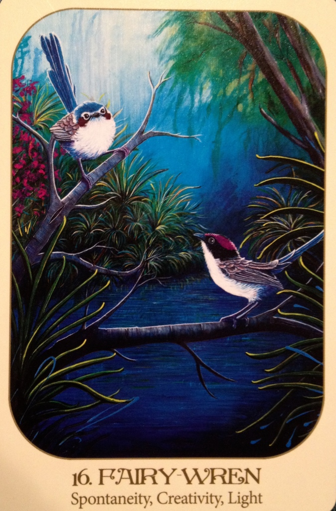 Fairy Wren, from the Animal Voices Oracle Card deck, by Chip Richards