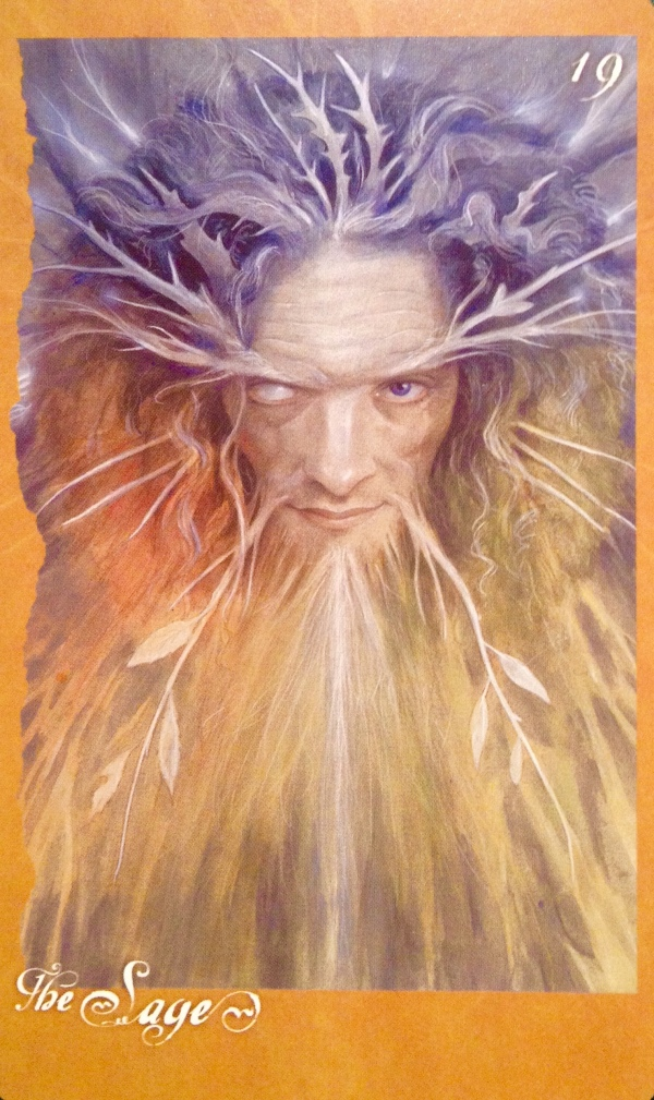The Sage, from The Faeries' Oracle, by Brian Froud and Jessica MacBeth
