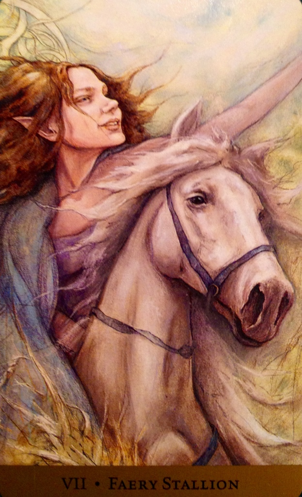 Faery Stallion, from the Tarot Of The Hidden Realm, by Julia Jeffrey and Barbara Moore