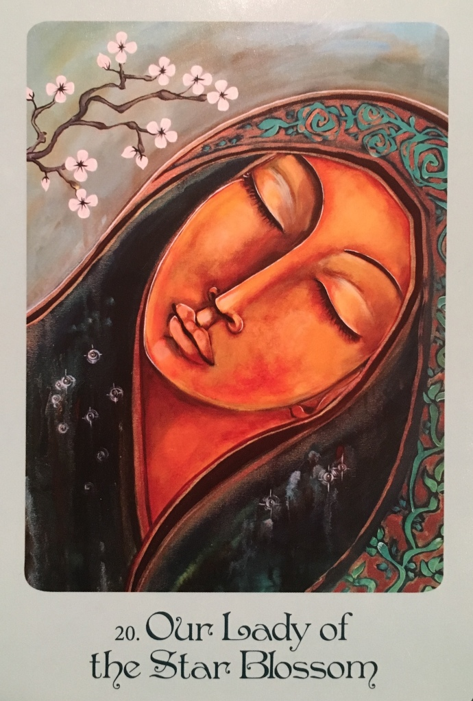 Our Lady Of The Star Blossom, from the Mother Mary Oracle Card deck, by Alanna Fairchild and Shiloh Sophia McCloud