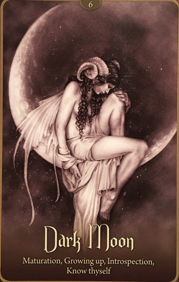 Dark Moon, from the Wild Wisdom Of The Faery Oracle, by Lucy Cavendish