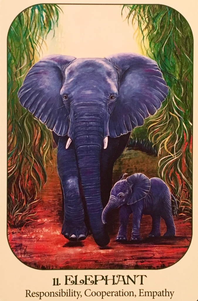 Elephant, from the Animal Voices Oracle Card deck, by Chip Richards, Illustrated by Susan Farrell
