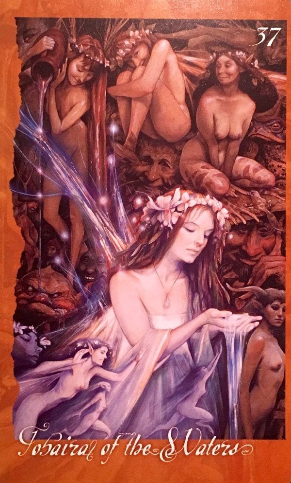 Tobaira Of The Waters, from The Faeries' Oracle, by Brian Froud and Jessica MacBeth
