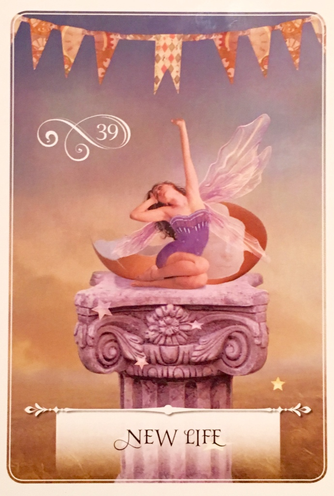 New Life, from the Wisdom Of The Oracle card deck, by Colette Baron-Reid