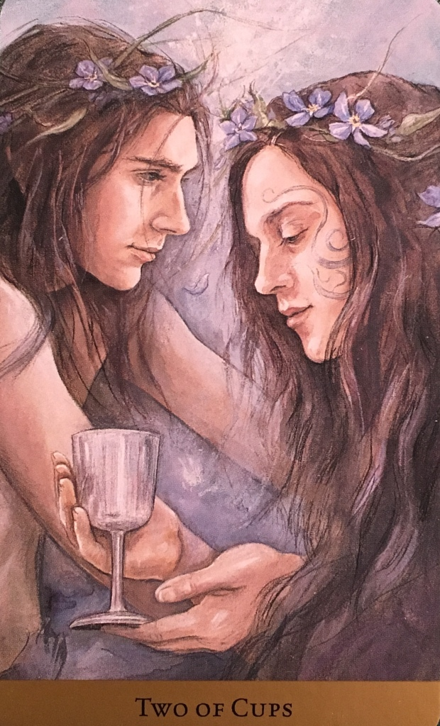 Two Of Cups, from the Tarot Of The Hidden Realm, by Julia Jeffrey and Barbara Moore