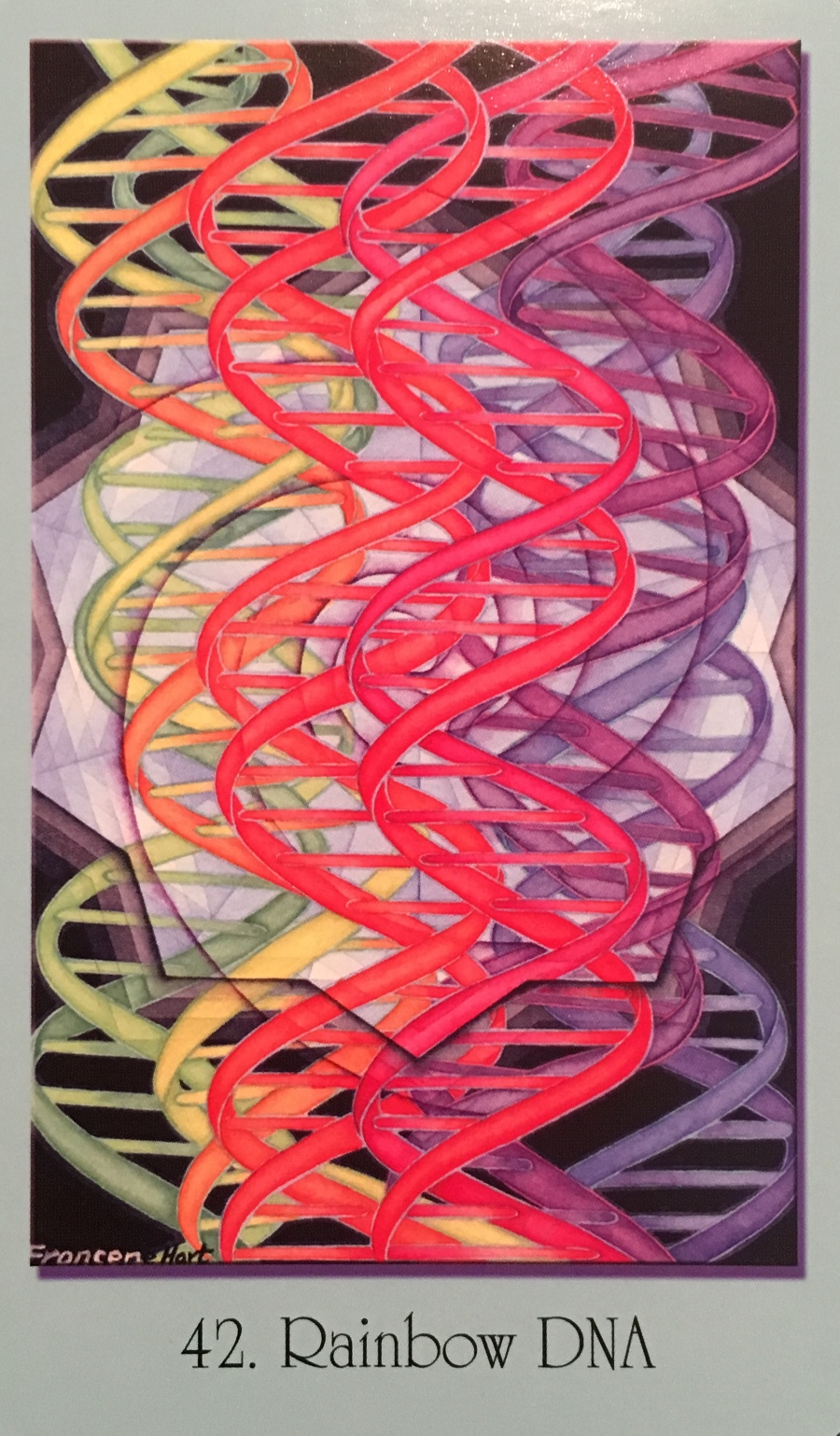 Rainbow DNA, from the Sacred Geometry for the Visionary Path  Oracle Card deck, by Francene Hart