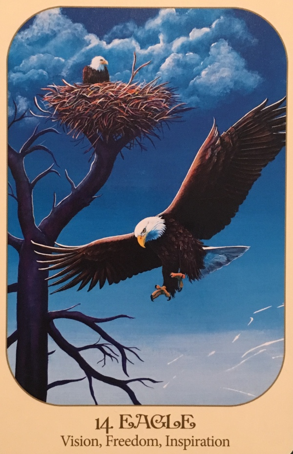 Eagle, from the Animal Voices Oracle Card deck, by Chip Richards artwork by Susan Farrell