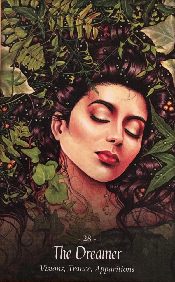 The Dreamer, from The Faery Forest Oracle Card deck, by Lucy Cavendish, artwork by Maxine Gadd