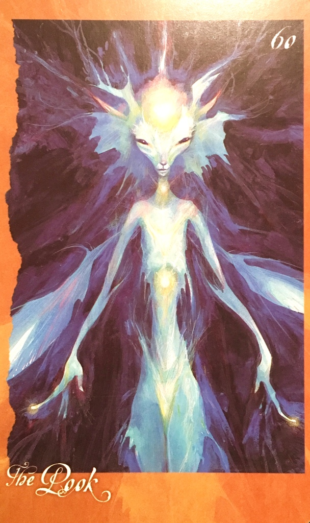The Pook, from The Faeries' Oracle, by Brian Froud and Jessica MacBeth
