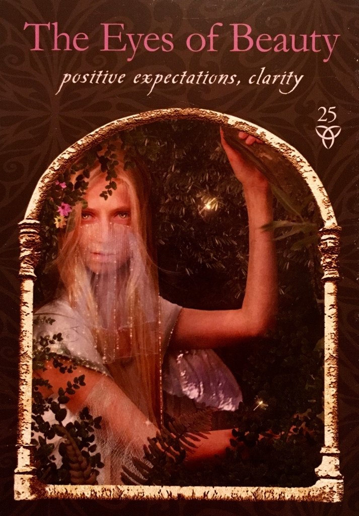 The Eyes Of Beauty, from the Wisdom Of The Hidden Realms, by Colette Baron-Reid, Illustrated by Jena DellaGrottaglia