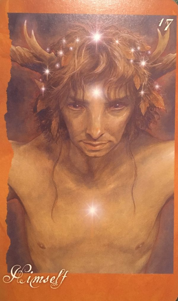Himself, from The Faeries' Oracle, by Brian Froud and Jessica MacBeth