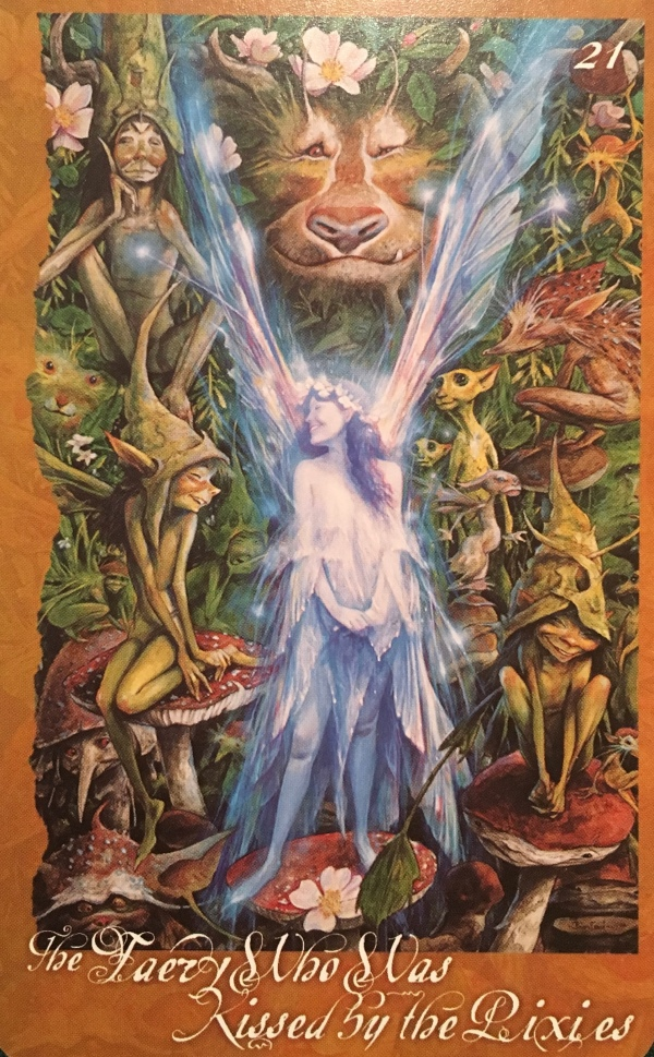 The Faery Who Was Kissed By The Pixies, from The Faeries' Oracle, by Brian Froud and Jessica MacBeth