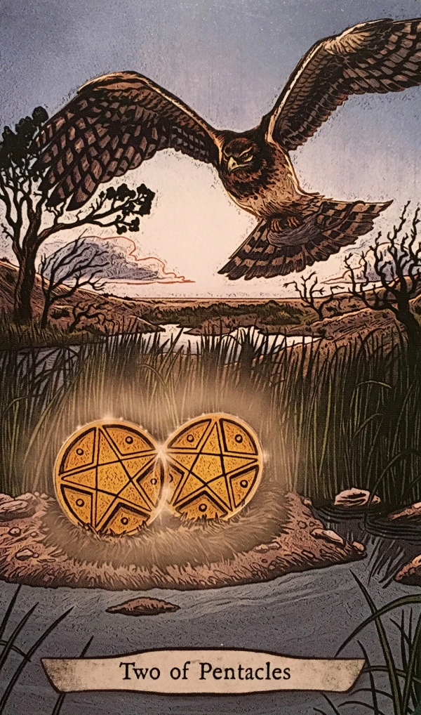 Two Of Pentacles ~ Harrier Hawk, from the Animal Totem Tarot Card deck, by Leeza Robertson, Illustrated by Eugene Smith